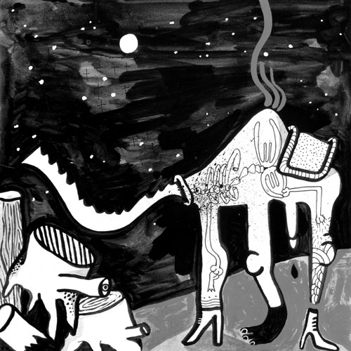 cammello senza magi
