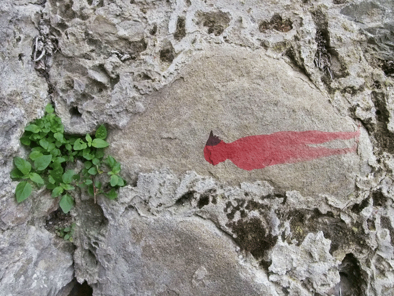 tumuli (particolare)